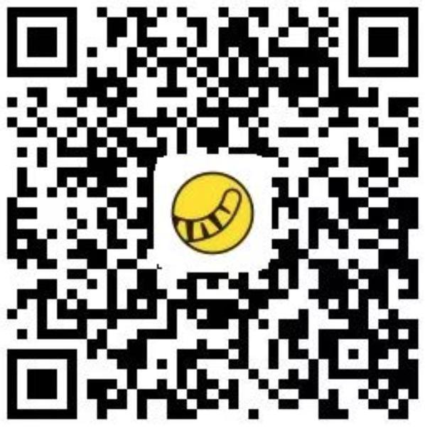 229499520481497